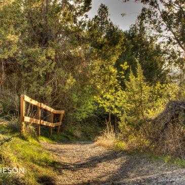 Cress Creek Trail